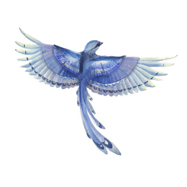ベスト かっこいい 鳥 イラスト 100 トップ画像の壁紙
