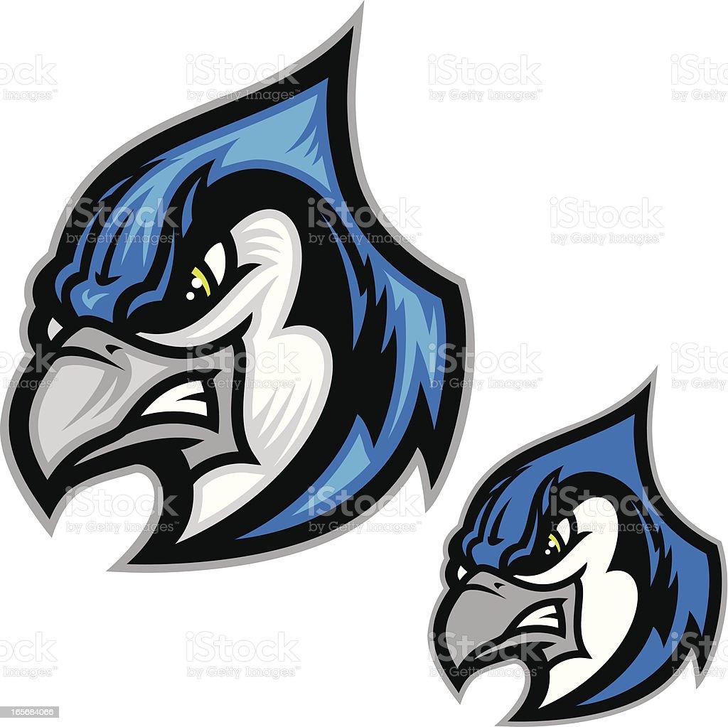 Blue Jay II vector art illustration