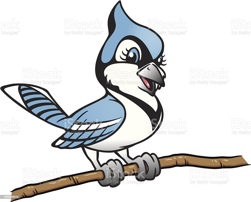 royalty free blue jay bird clip art vector images illustrations rh istockphoto com baby blue jay clipart blue jays baseball clip art