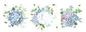 Blue, lilac, violet and white flowers and succulents vector design bouquets.Hydrangea, eucalyptus, succulent, cactus, greenery.Floral border composition. All elements are isolated and editable