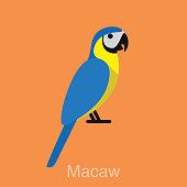 Blue Macaw, bird series