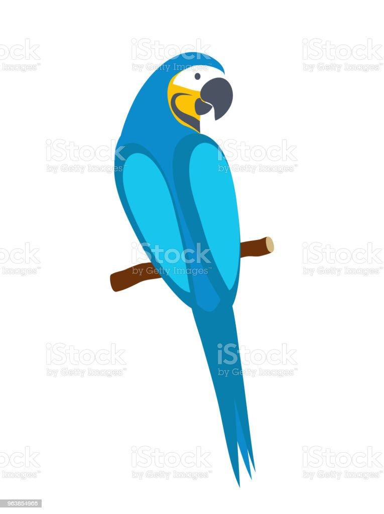 Blue macaw parrot. Isolated on white background. Vector illustration. - Royalty-free Animal stock vector