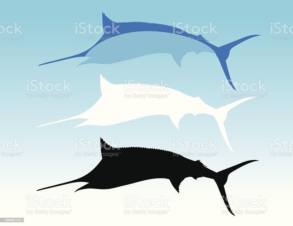 Azul Marlin ilustración de azul marlin y más banco de imágenes de aguja azul libre de derechos