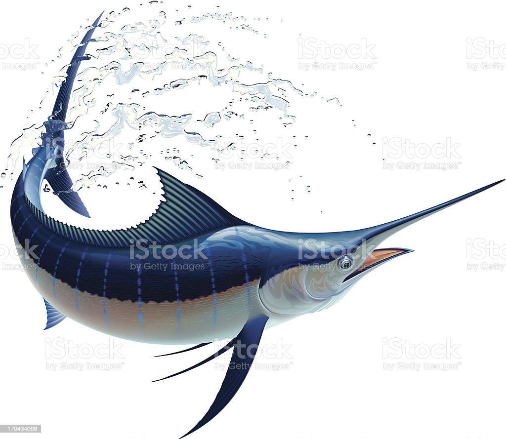 Blue Marlin royalty-free blue marlin stock vector art & more images of animal