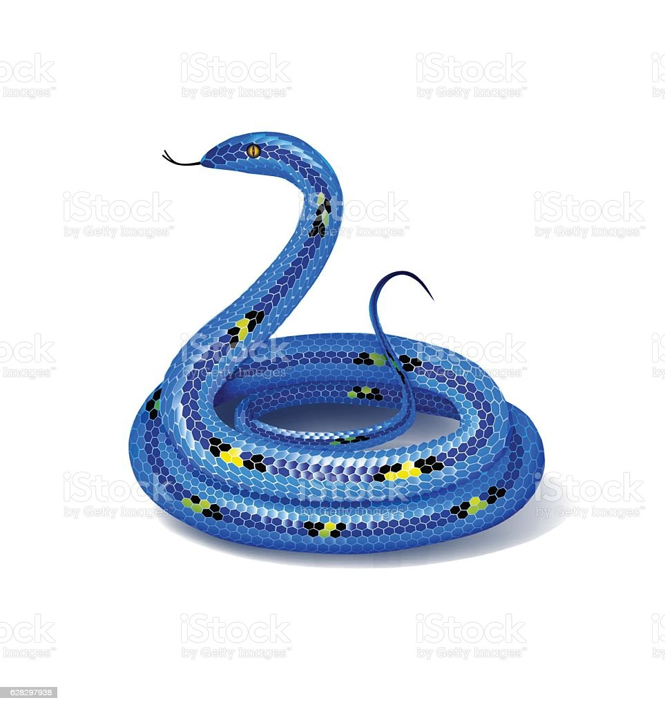 Blue mottled snake, coiled up in a ball. Vector illustration. vector art illustration