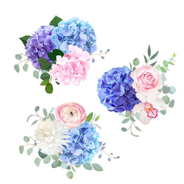stockillustraties, clipart, cartoons en iconen met blauw, roze en paars hortensia, orchidee, roos, witte chrysanthem - hortensia
