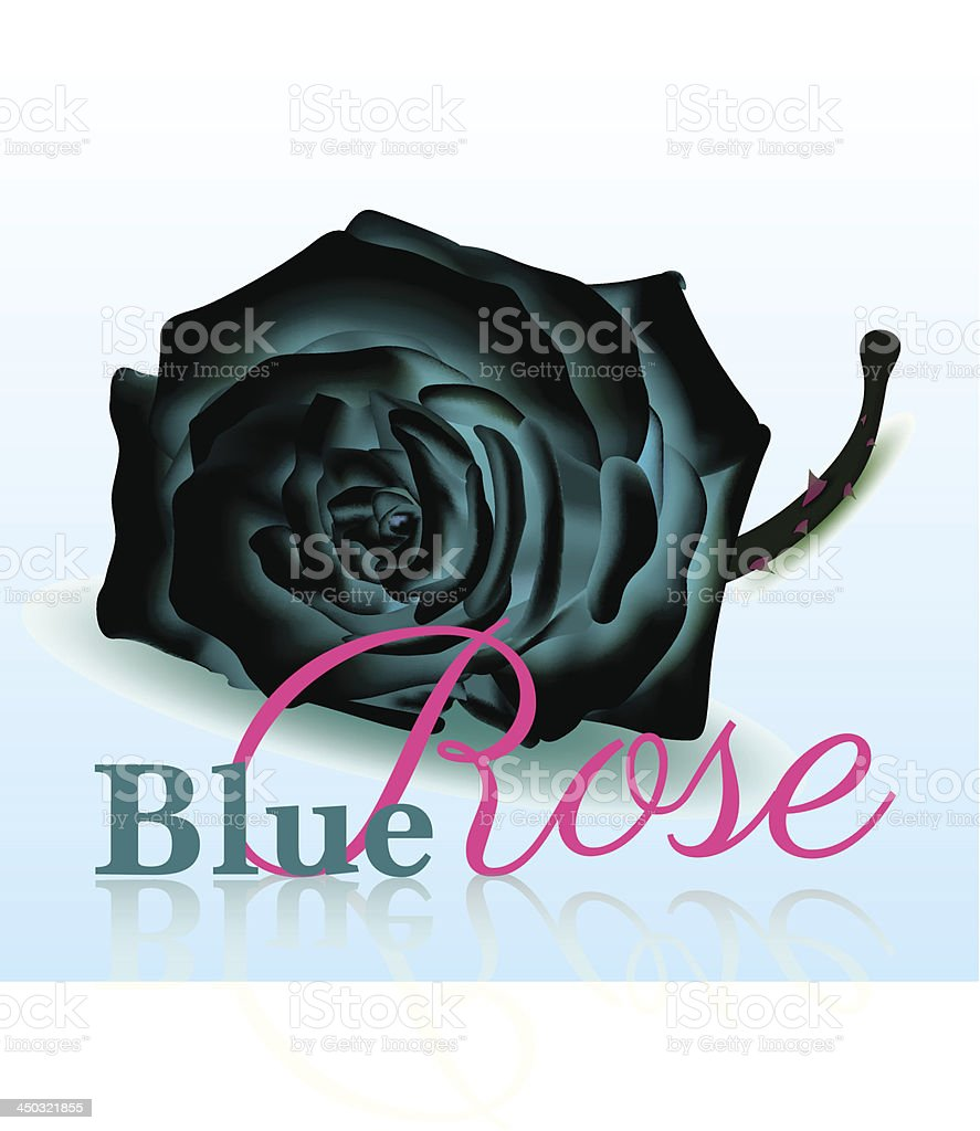 Blue Rose On white Background with Text royalty-free stock vector art