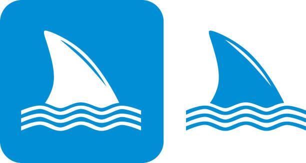 Blue Shark Fin Icons Vector illustration of two shark fin icons. animal fin stock illustrations