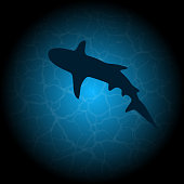 Blue water background with under water shark black silhouette