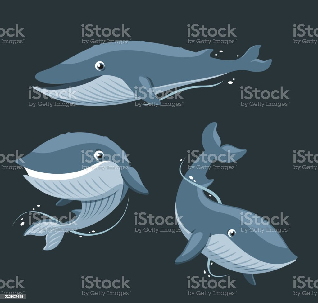 Blue Whale Aquatic Mammal. vector art illustration