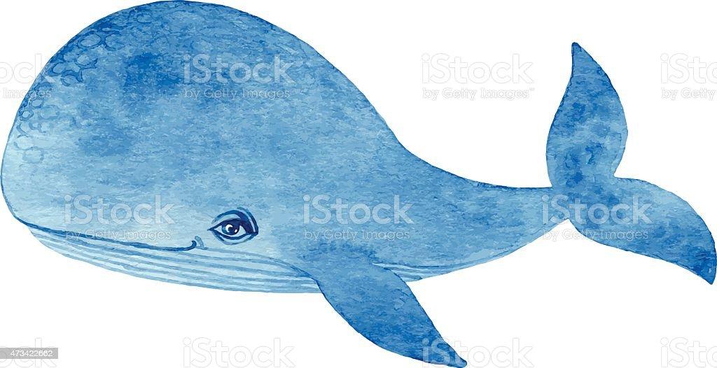 Blue whale vintage illustration vector art illustration