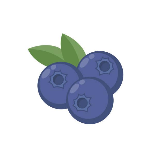 illustrazioni stock, clip art, cartoni animati e icone di tendenza di blueberries with leaf vector icon. blueberry icon clipart. blueberry cartoon. - mirtilli