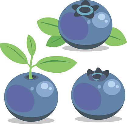Blueberry Cartoon Stock Illustration - Download Image Now ...