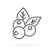 Blueberry flat line icon, forest berry sign, healthy food logo. Illustration of cranberry, lingonberry for natiral food store. Wild berries set.Isolated line symbol of delicious plants. Healthy eating