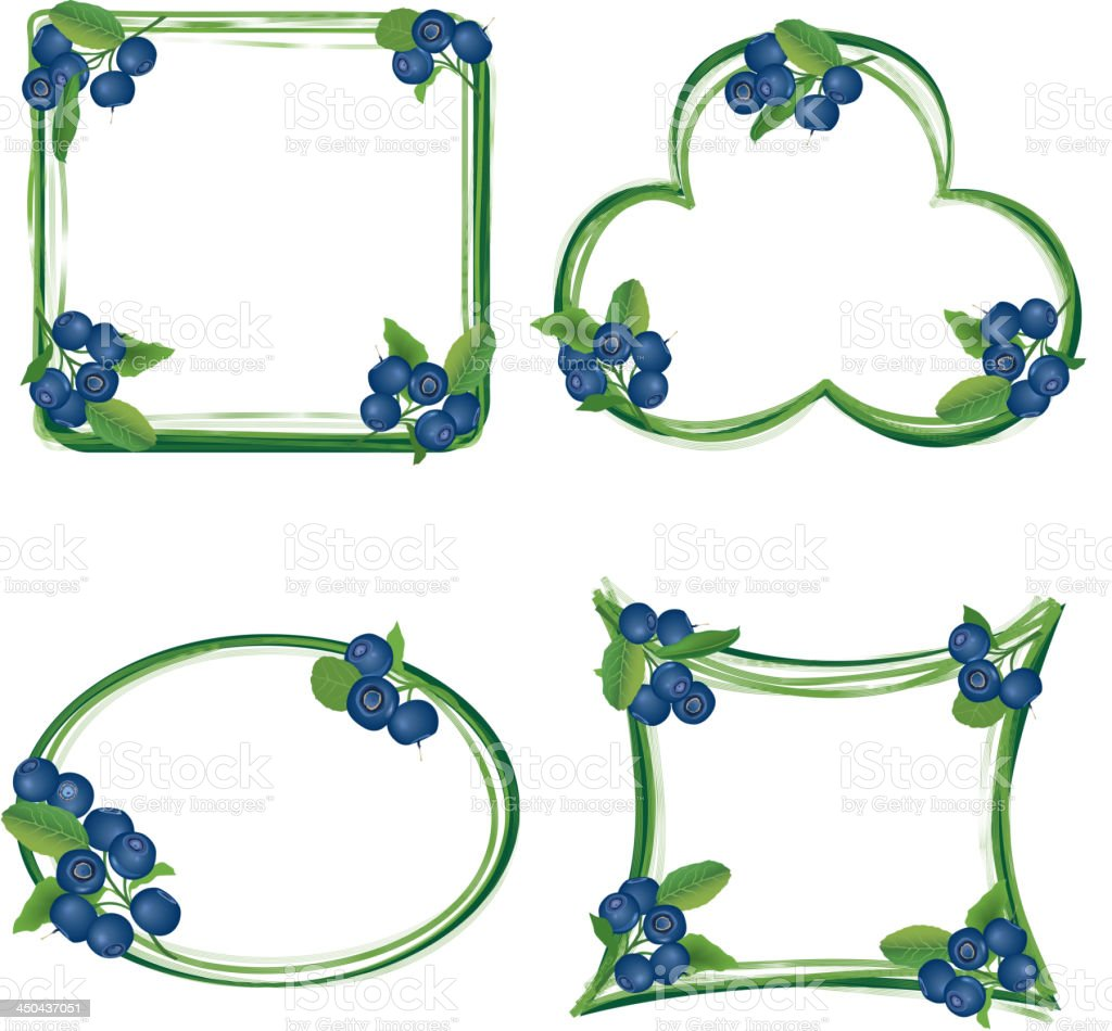 blueberry frame collection. royalty-free stock vector art