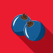 Vector illustration of a blueberry fruit Flat Design themed Icon with shadow. Vector eps 10, fully editable.