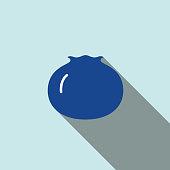 Blueberry fruit  flat icon series