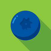 Vector illustration of a blueberry against a green background in flat style.