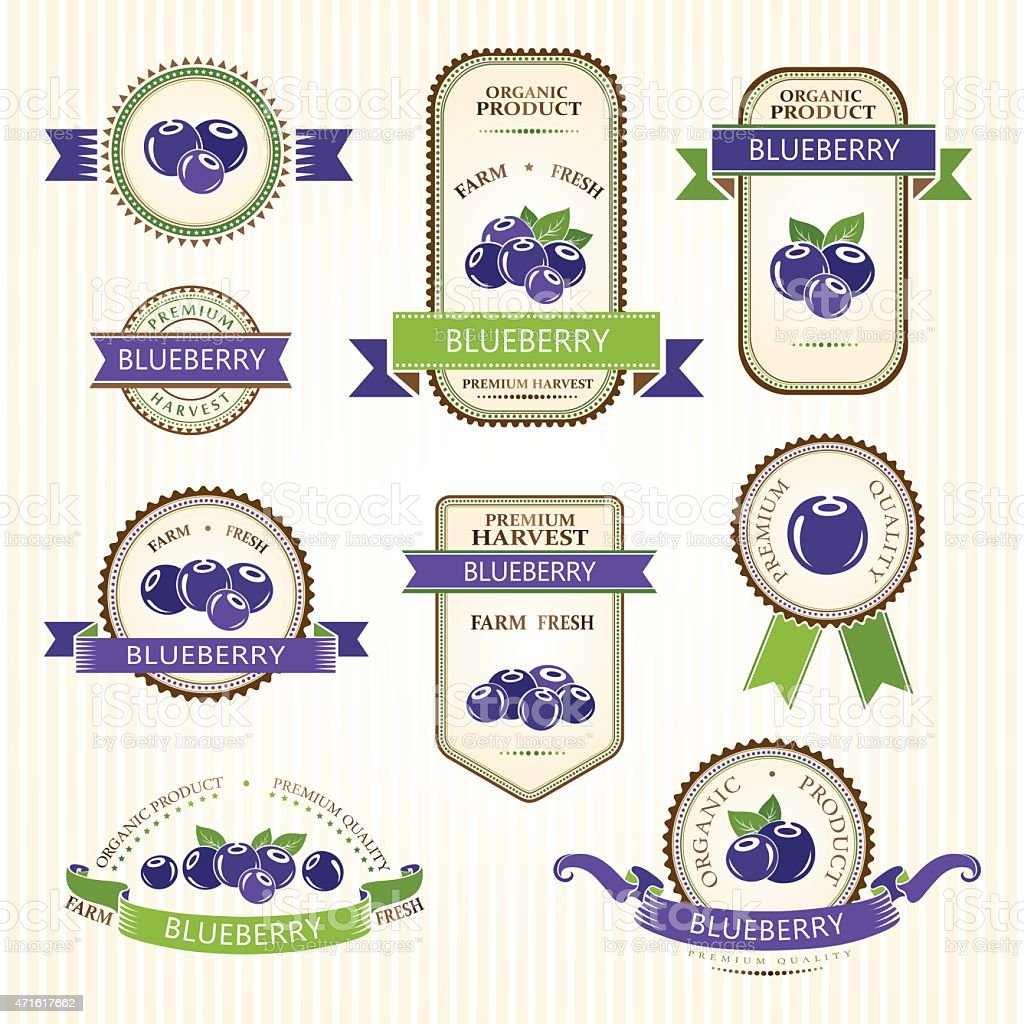 Blueberry labels collection vector art illustration