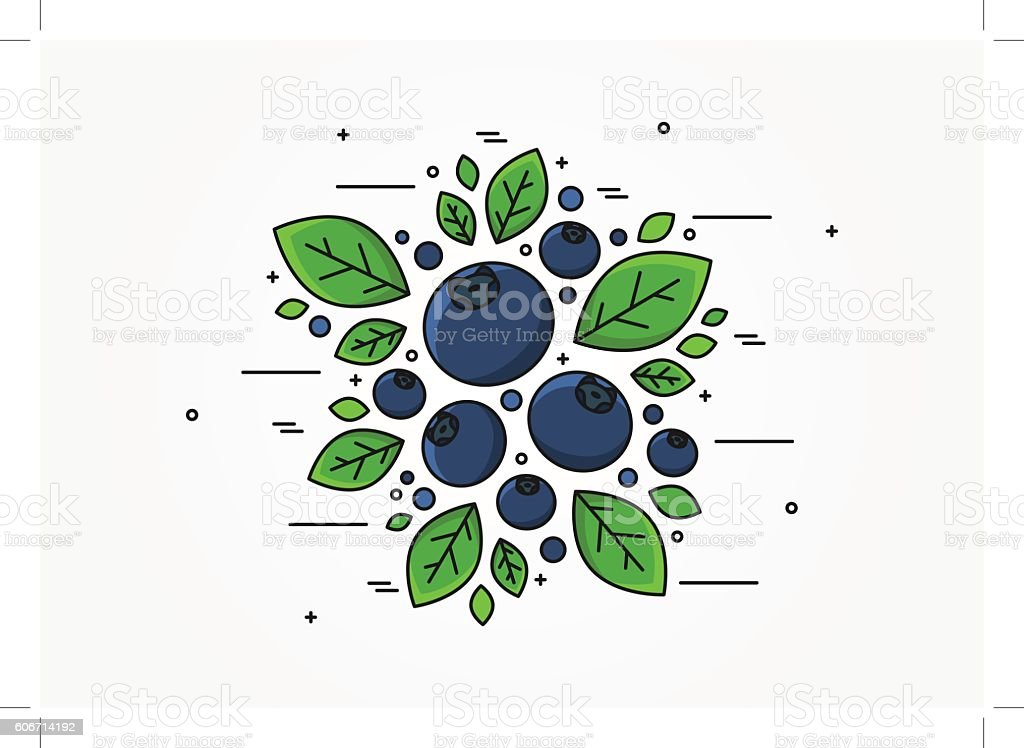 Blueberry line art vector concept vector art illustration
