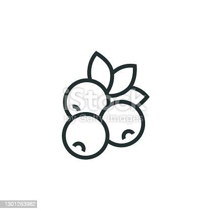 istock Blueberry Line Icon 1301263982