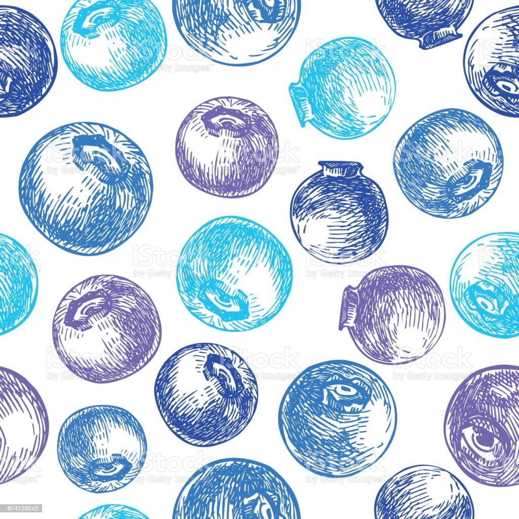 Blueberry vector seamless pattern drawing. Isolated hand drawn b royalty-free blueberry vector seamless pattern drawing isolated hand drawn b stock vector art & more images of backgrounds