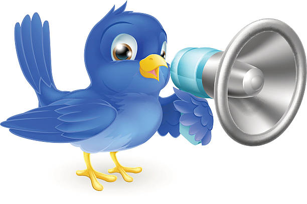 Bluebird with megaphone vector art illustration