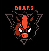 Vector illustration of the wild boar emblem of the emblem of the club mascot sports team