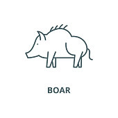 Boar vector line icon, linear concept, outline sign, symbol