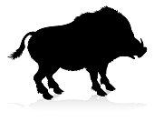 An animal silhouette of a boar or warthog