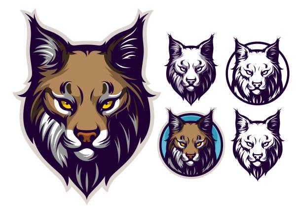 Bobcat head emblem Bobcat or lynx head vector illustration. bobcat stock illustrations