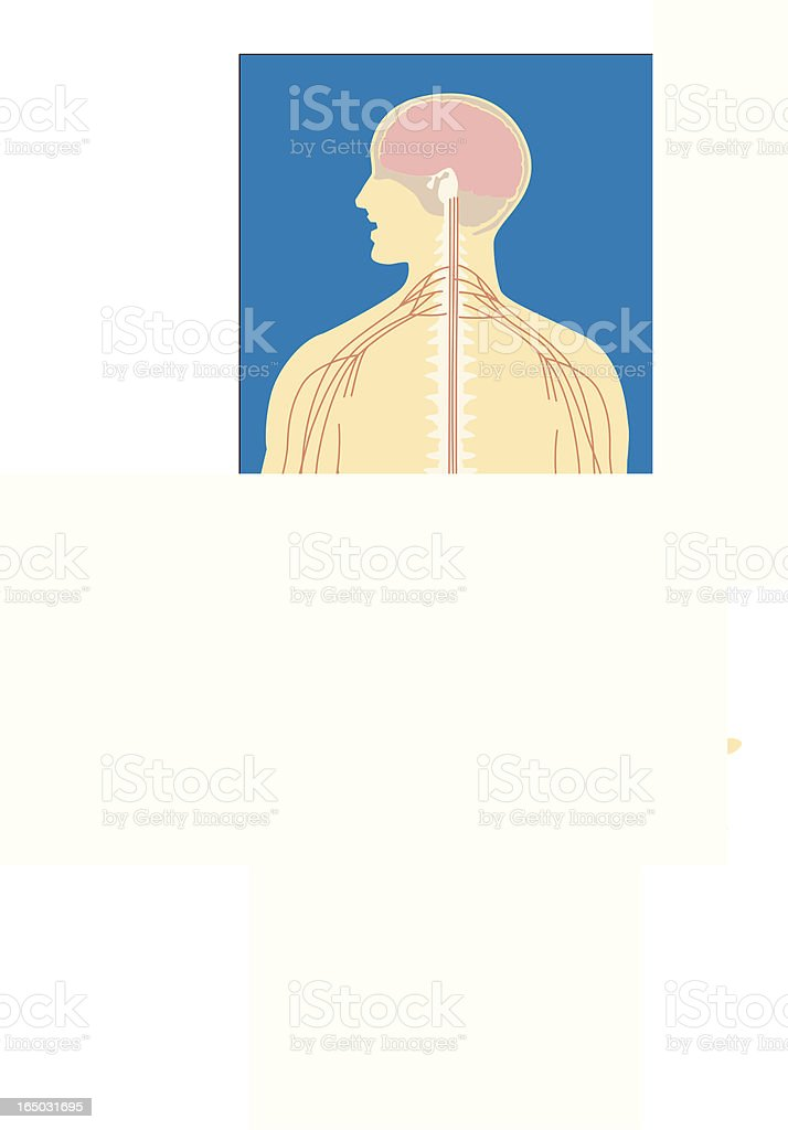Body and Brain royalty-free stock vector art