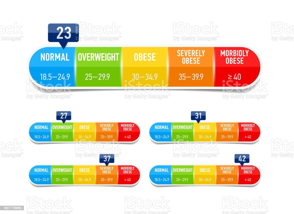 Body Mass Index Bmi Classification Chart Stock Illustration