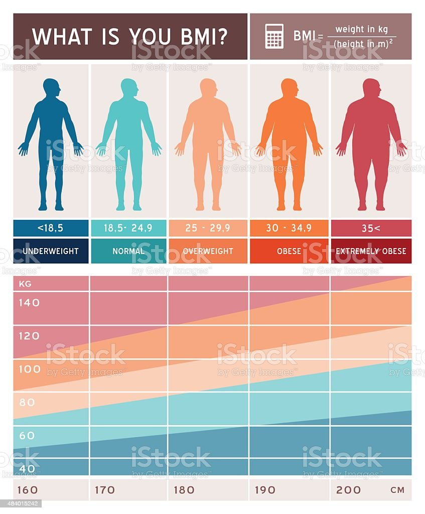 Body mass index infographic vector art illustration