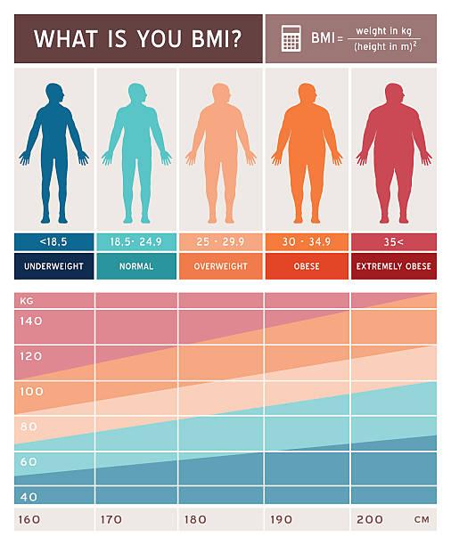 Body mass index Infografik – Vektorgrafik