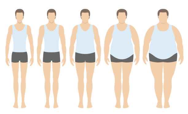 ilustrações de stock, clip art, desenhos animados e ícones de body mass index vector illustration from underweight to extremely obese in flat style. man with different obesity degrees. - gordura