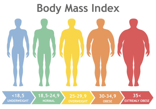 Body mass index vector illustration from underweight to extremely obese. Man silhouettes with different obesity degrees. Body mass index vector illustration from underweight to extremely obese. Man silhouettes with different obesity degrees. Male body with different weight. weight loss stock illustrations