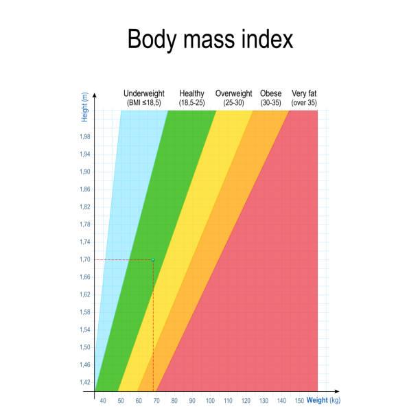 Body-mass-Index (BMI). Gewicht Höhe Diagramm. – Vektorgrafik