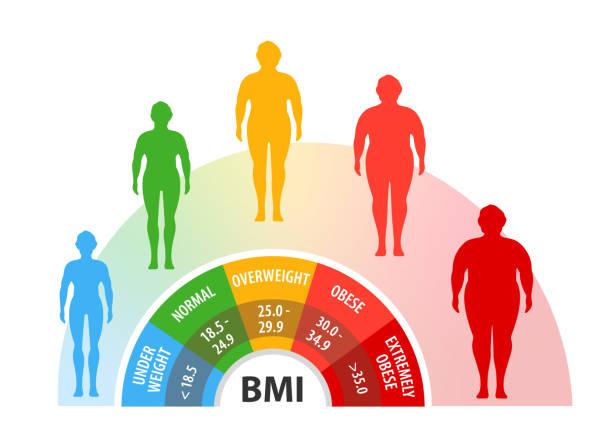 Frau 5 bmi 24 BMI Rechner