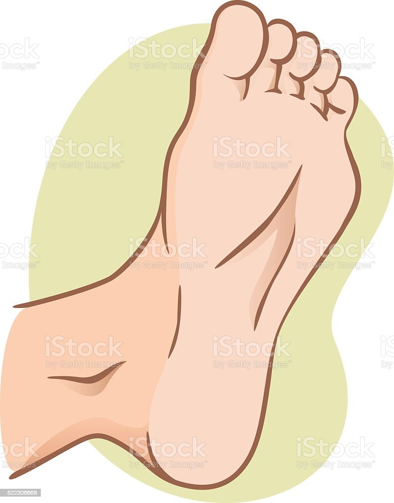 Body Part Illustration Plant Or Sole Of The Foot Caucasian Stock ...