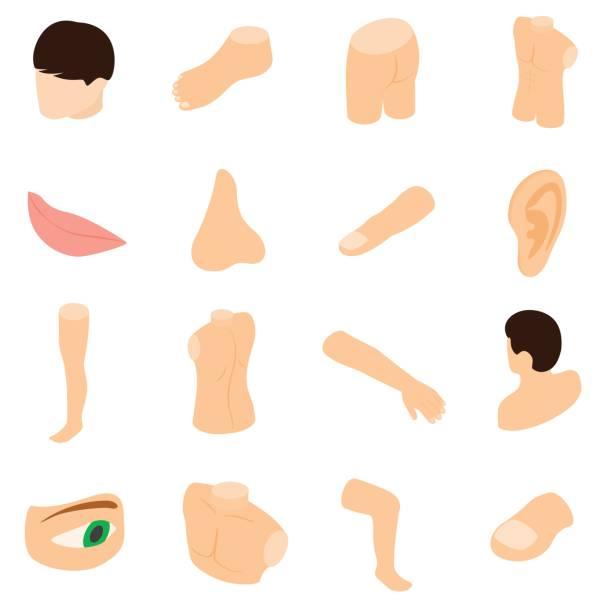 Karosserieteile Icons Set, isometrischen 3d Stil – Vektorgrafik