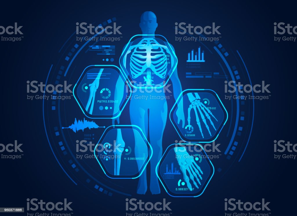 body scan vector art illustration