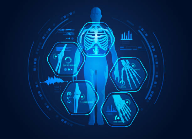 body scan graphic of man's body x-ray with digital science interface of skeleton and bones scan for biological infographics radiology stock illustrations