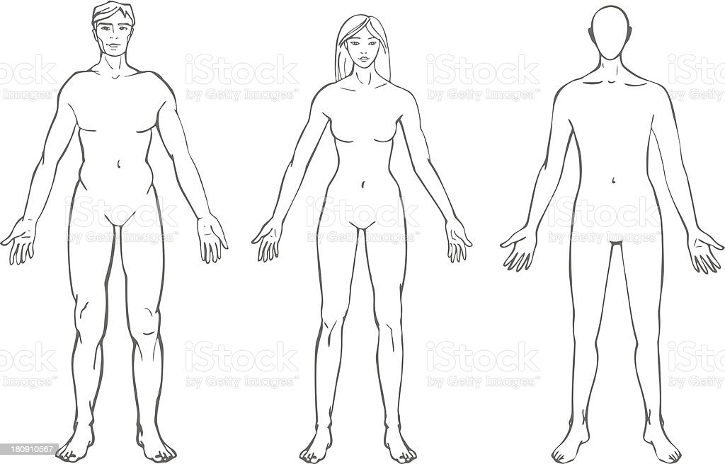 Body Shapes Stock Illustration - Download Image Now - iStock