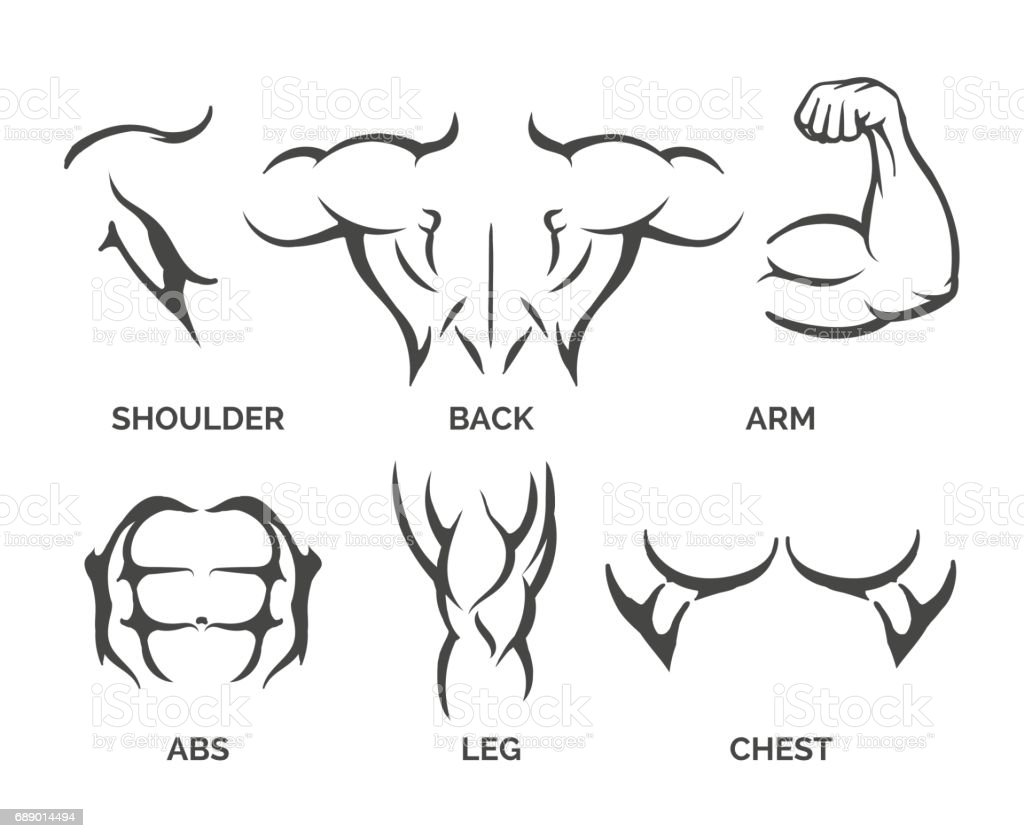 Bodybuilder body parts icons vector art illustration
