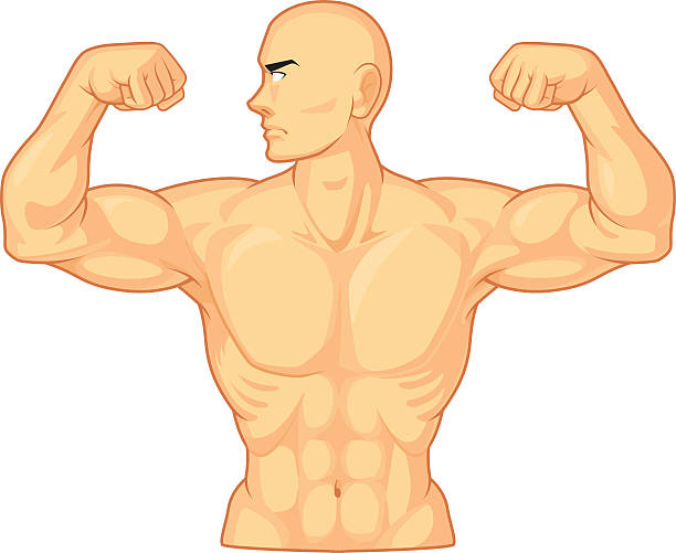 bodybuilder flexing muscles - cartoon muscle arms stock illustrations, clip art, cartoons, & icons