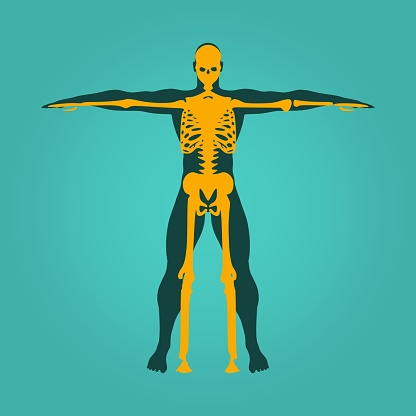 Helps in bone health