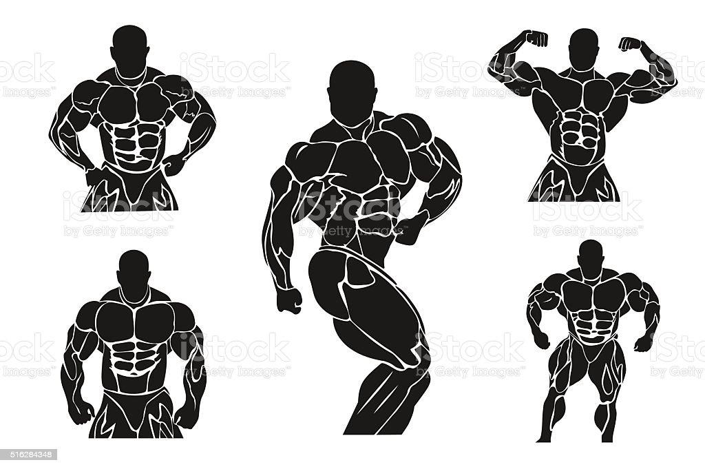 Bodybuilding Und Kraftdreikampf Konzeptsymbol Banner Vorlagen Wappen ...
