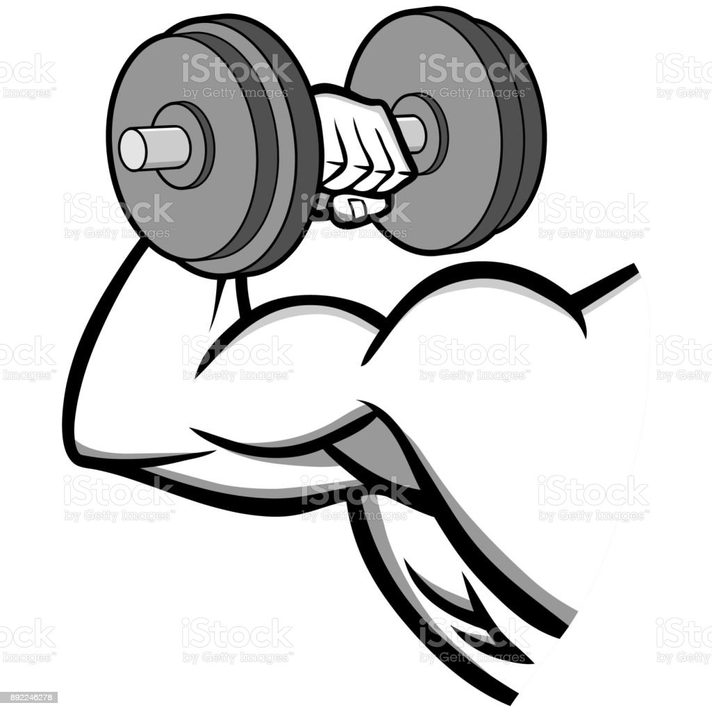 Empty Gym For Fitness And Bodybuilding Stock Image - Image