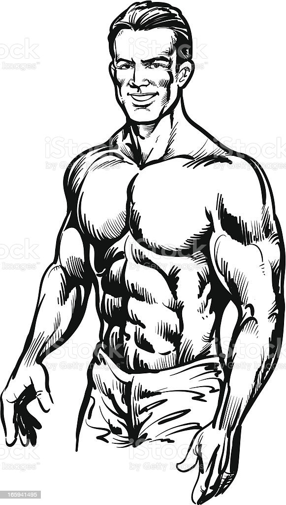 Bodybuilding royalty-free bodybuilding stock vector art & more images of adult